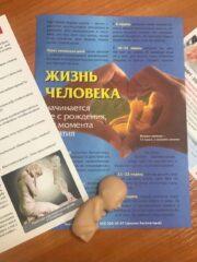 Надеюсь, мы успели: в ПсковГУ завершилась акция «В защиту жизни»